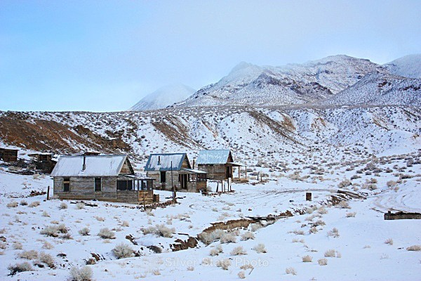 Poinsettia Mining Camp - Ghost Towns