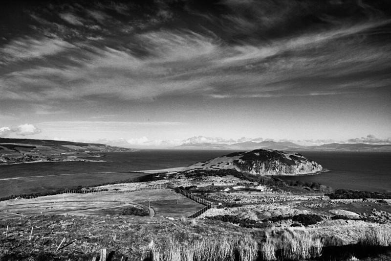 Davaar island bw12211 - Black & White