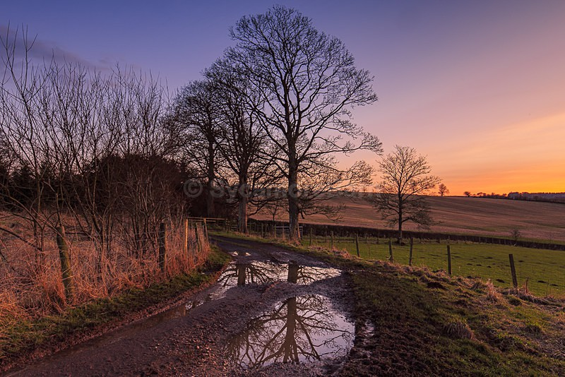 Muddy reflections - Dawn to Dusk Gallery