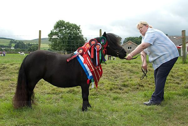 29 - Moniaive Horse Show 2010