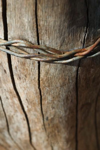 Bound - Linear