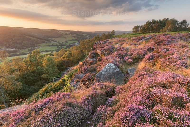Froggatt Edge Sunset | Peak District Heather Photo