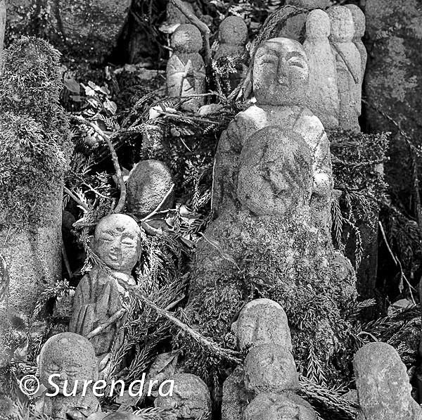 Chokokuji Temple 3 - Jizo on Sado Island