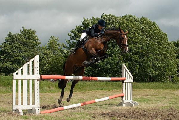 20 - Moniaive Horse Show 2010