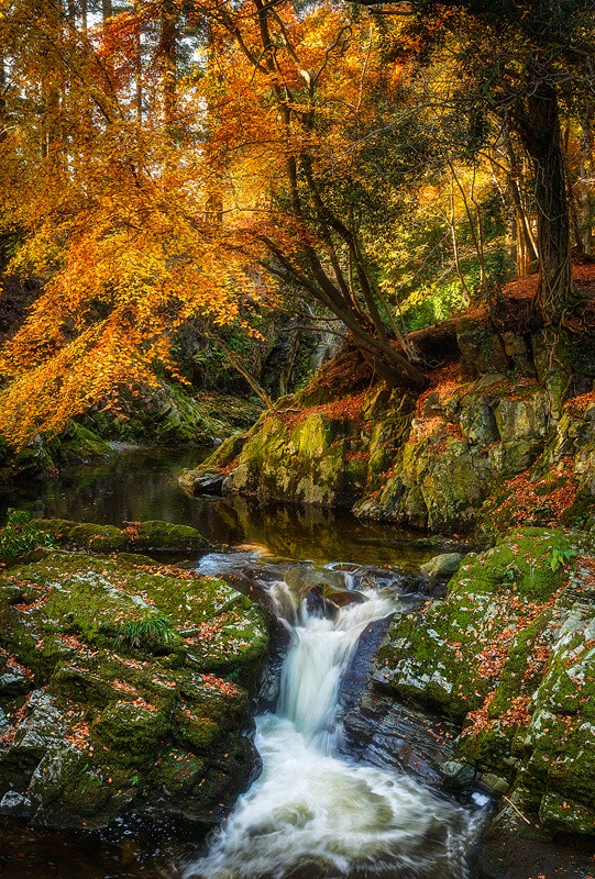 Little Waterfall on the Shimna River in the Fall