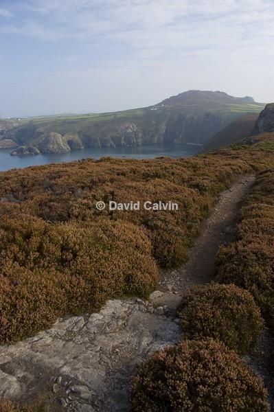 Pembrokeshire Coast Path - Coast
