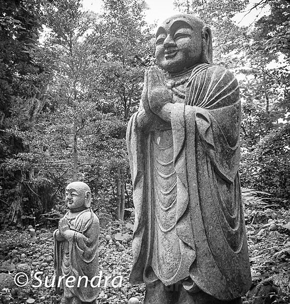 Nashinoki Jizo 1 - Jizo on Sado Island