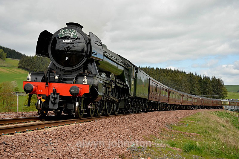 Flying Scotsman - WAVERLEY LINE 2012-2015