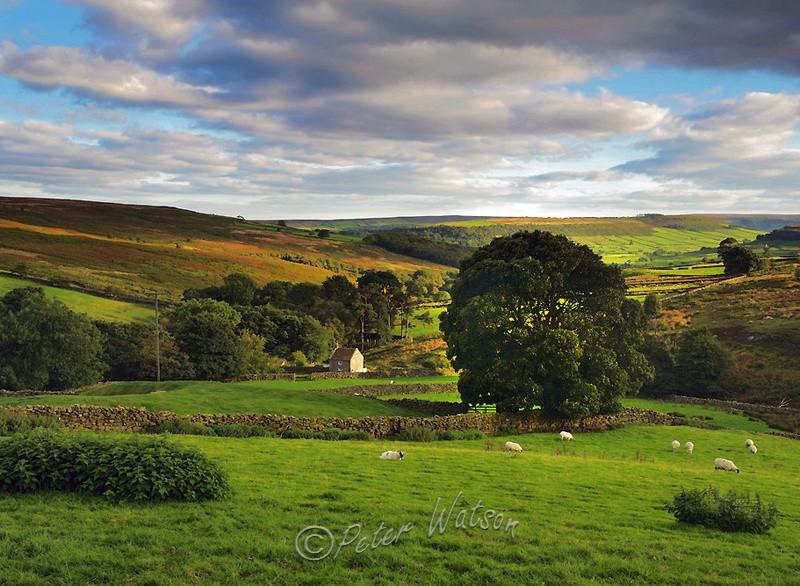 Danby Low Moor North Yorkshire - England