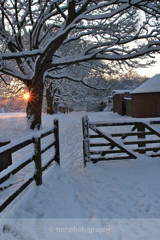 Through the gate. - Snow Scene's /Winter
