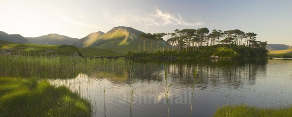 Panoramic Of Derryclare Lake, Connemara. - Landscape Gallery