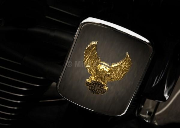 Harley Davidson - TRANSPORT