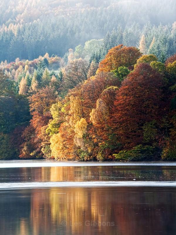loch Faskally dawn - Perthshire