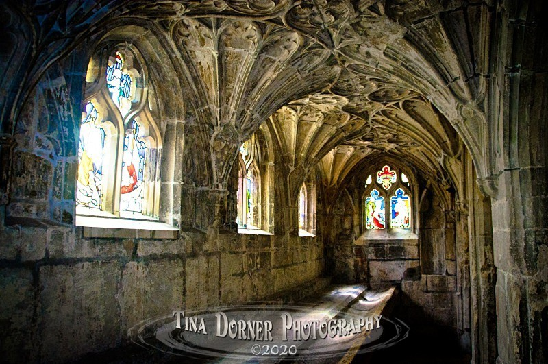 Cloisters, Gloucester Cathedral by Tina Dorner Photography.  Forest of Dean and Wye Valley, Gloucestershire