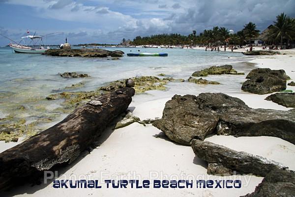 Akumal Beach Mexico - Mexico