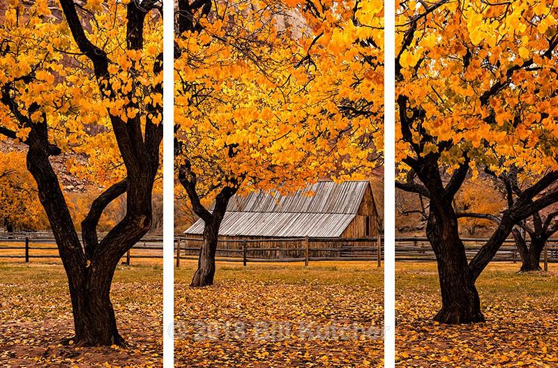 Fruita Barn Triptych - Current Show