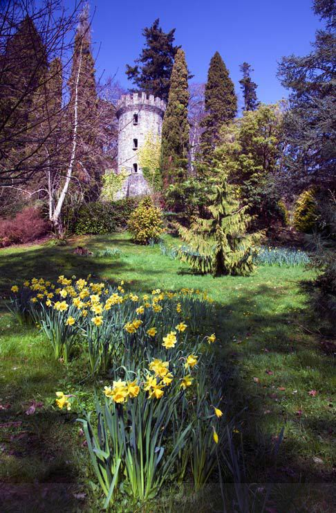 Spring Garden - Landscapes of Ireland - Glendalough and the Wicklow Mountains