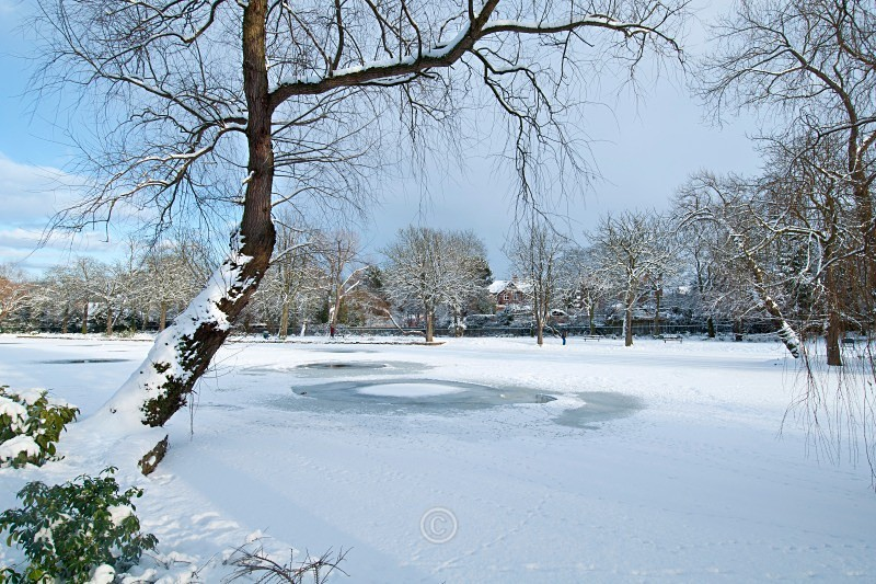Frozen Lake - North-East England