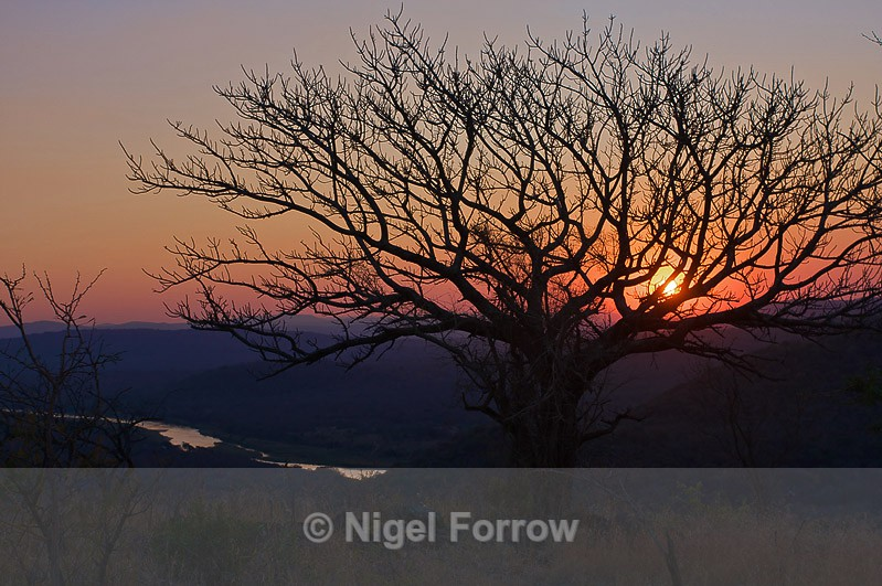 African Sunset - South Africa