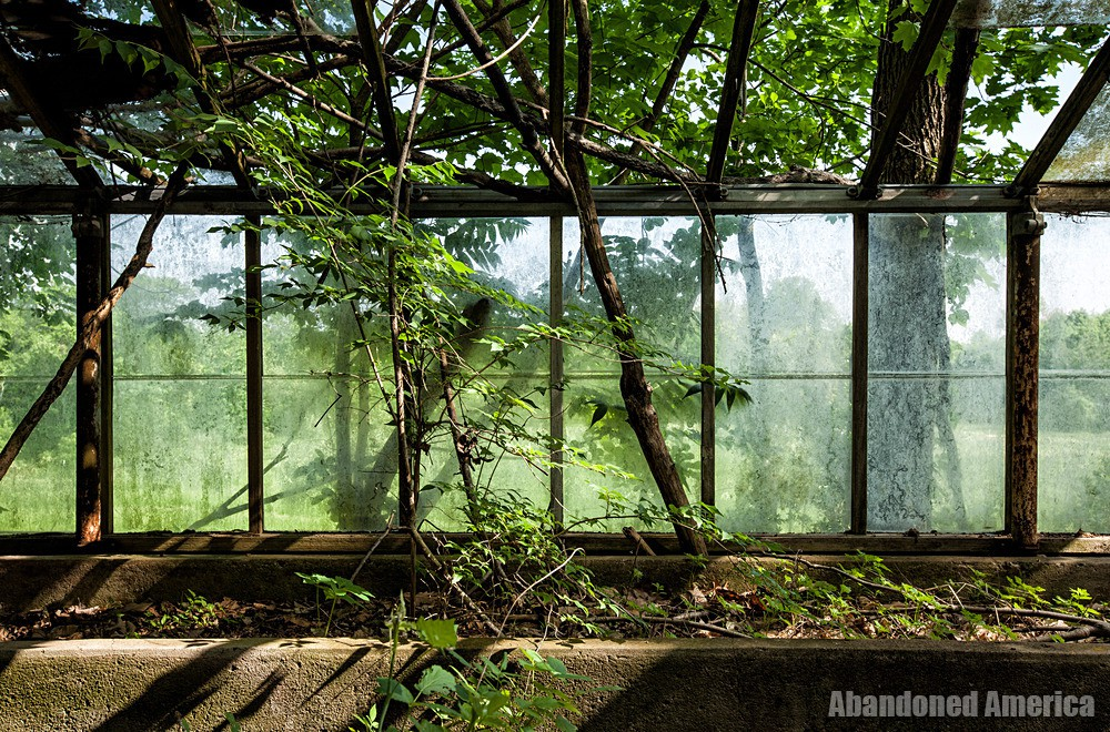 Pennhurst State School (Spring City, PA) | Greenhouse Windows - Pennhurst State School and Hospital