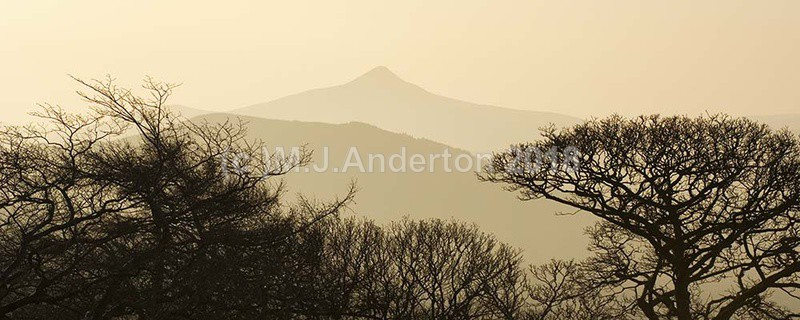 Great Sugar Loaf Panoramic - Co.Wicklow.