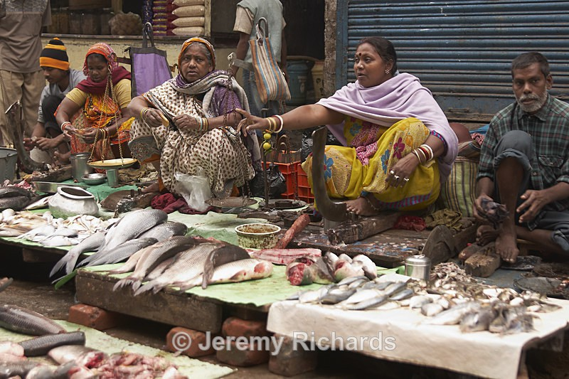 Calcutta Fish Market - India