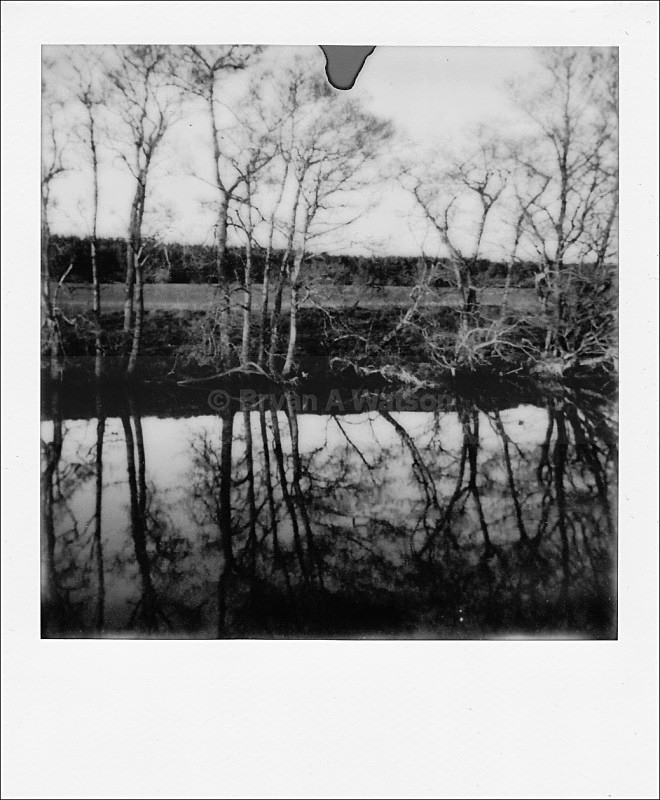 River reflections - Polaroid