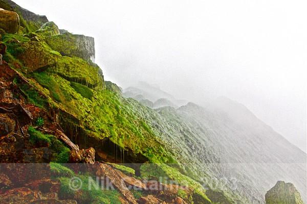 Rocks Mist & Moss - Rushing Waters