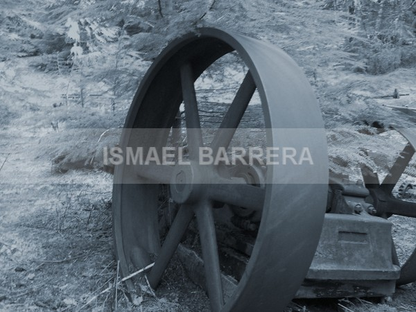 wheel 2 - Life Stills