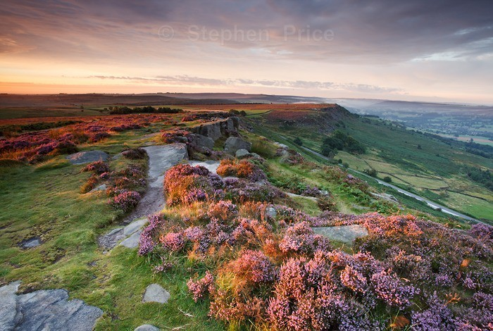 Photo of Peak District Heather | Curbar Edge, Derbyshire at Dawn