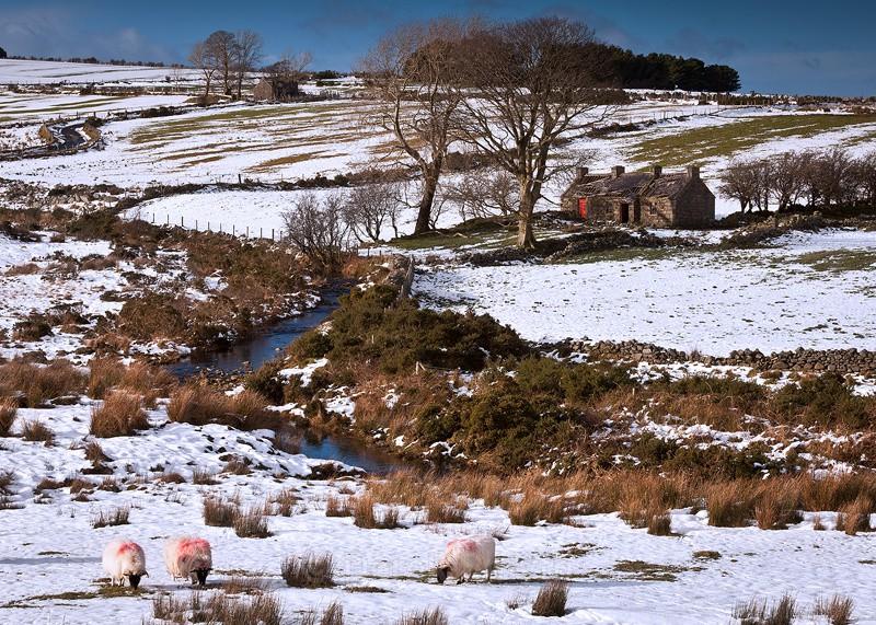 Deserted Irish Cottages - Mourne Mountains Landscape Photograph