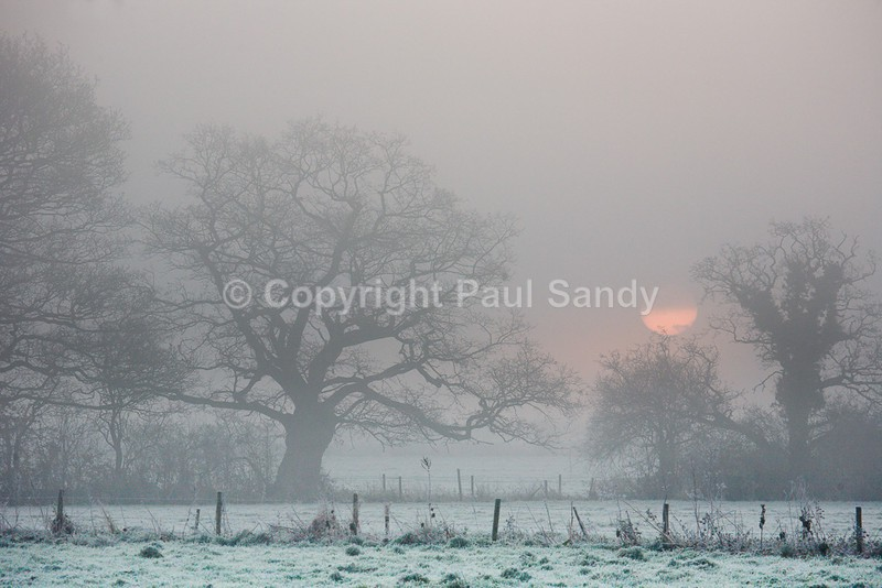 Winter Sunrise, Devon - Featured Images