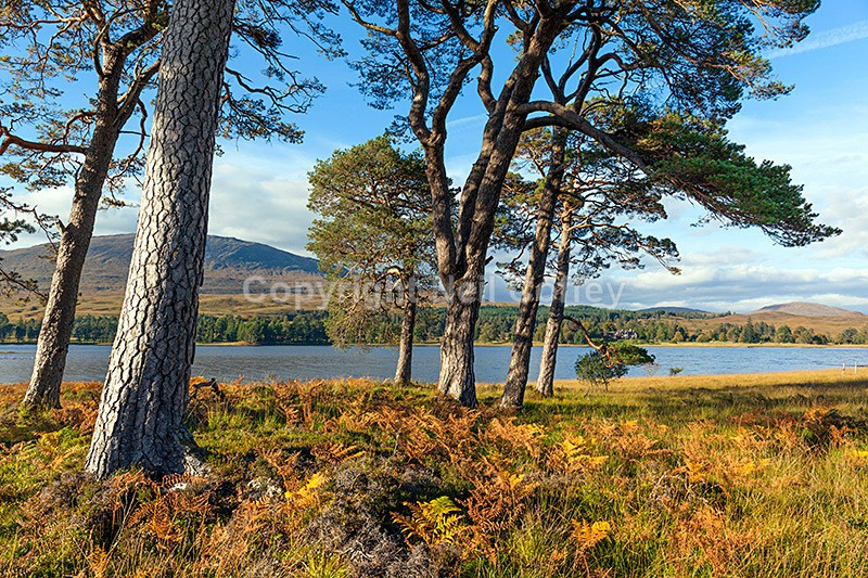 Loch Tulla, Argyll & Bute5 - Landscape format
