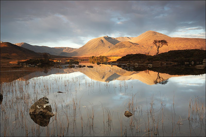Morning Over Rannoch Moor - Photographs of Scotland
