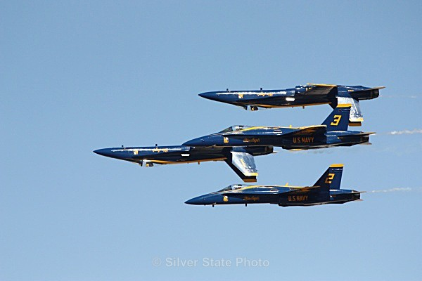 Blue Angels - Nevada Birds
