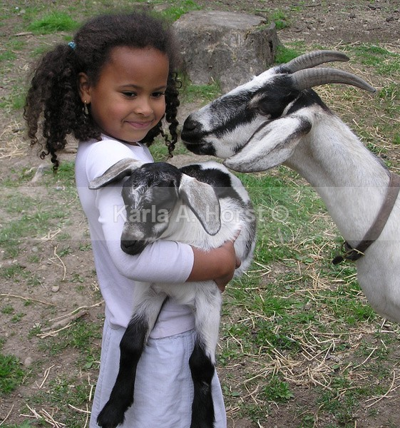 Abby and Goats - Photos