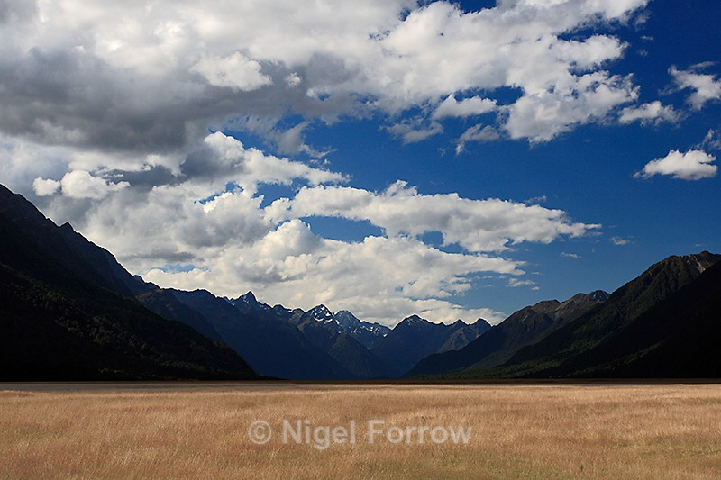Eglinton Fields on the road to Milford Sound - New Zealand