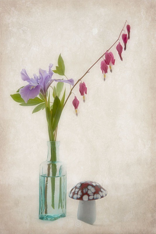 Still Life Medley - FLOWERS