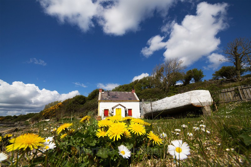Millbay Cottage, Inch Island - Ireland by Day