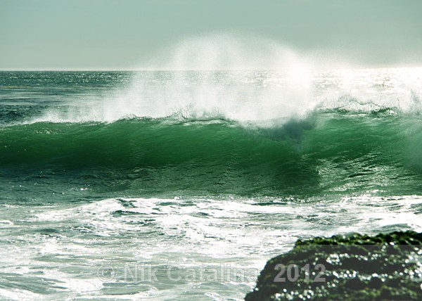 Wild Green Wave - SeaScapes