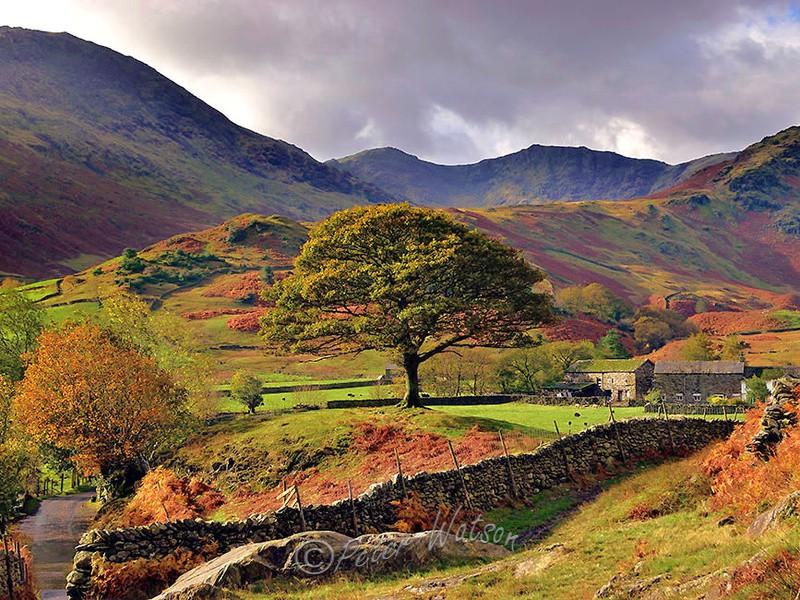 Langdale The Lake District - England