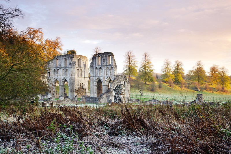 Autumn in Ruins, Roche Abbey 5435 - Yorkshire