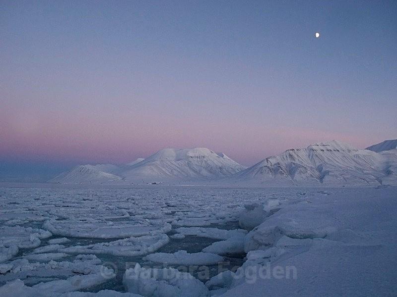 Adventfjorden 2063 - The daylight returns