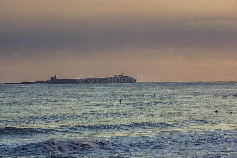Winter surfing - Seascape Gallery