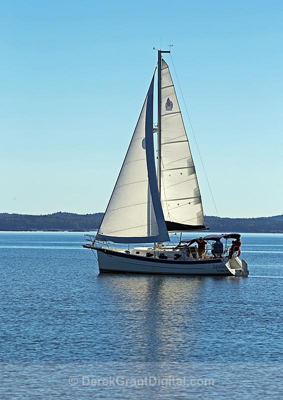 Saling on Passamaquoddy Bay - Boats