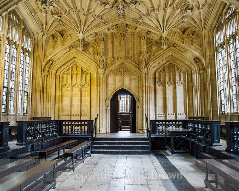 Divinity School Oxford 4 by David Brown - Different Oxford