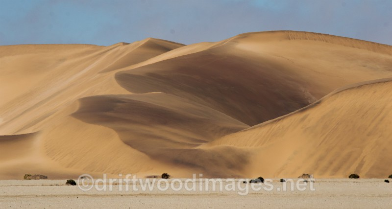 Namibia Walvis Bay desert Living Desert dunes - Namibia, Southern Africa
