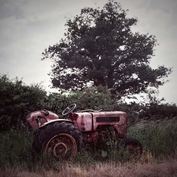 Tractor by the Tree - Transport and Machinery