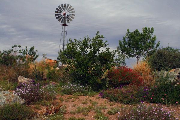 Windmill Ridge - Tuscon, Arizona