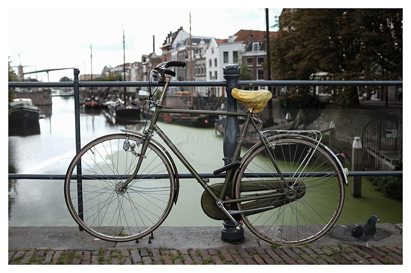 Bike - Rotterdam